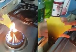 topljeni_sir