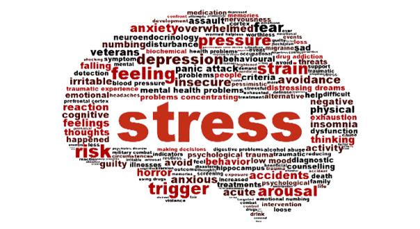 sl_stressbrain