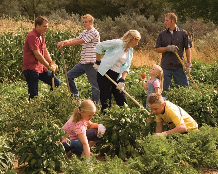 mormon-gardening